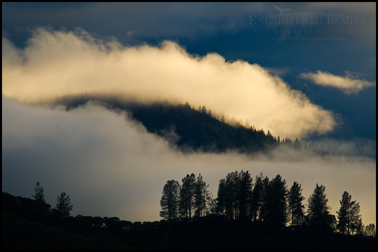 Image: Light on clouds over a forest clouds on a stormy morning in the Wiskeytown Shasta - Trinity NRA, California - ID# 110601b_NCA-0078