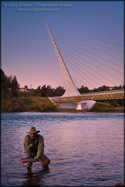 Photo: Fisherman holding up a catch & release steelhead caught in the Sacramento River near the Sundial Bridge in evening light, Redding, California