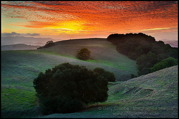 Photo: Red clouds at sunset over oak trees and hills, Briones Regional Park, Contra Costa County, California