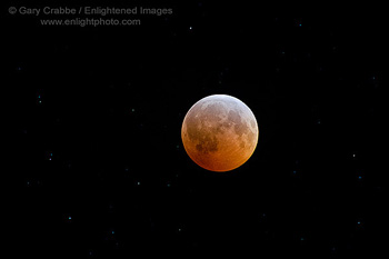 Photo: Total Lunar Eclipse on the winter Solstice, December 20-21, 2010