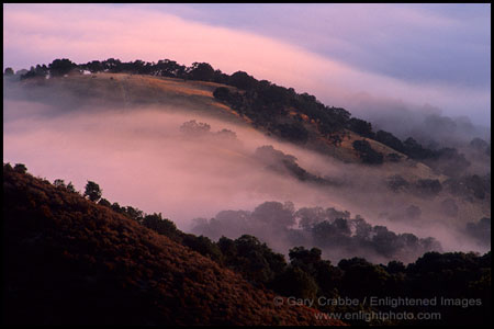 Photo: Morning fog over hills from Fremont Peak, near Hollister, California