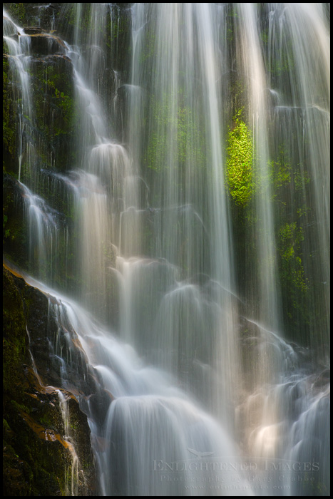 Photo: Sunlight on Berry Creek Falls (Detail), Big Basin State Park, Santa Cruz mountains, California