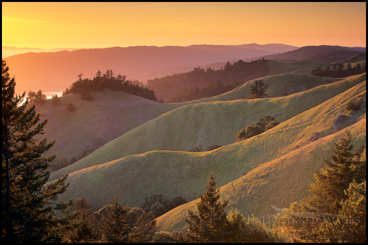 Image: Sunset along the green hills of Bolinas Ridge in Spring, Mount Tamalpais State Park, Marin County, California