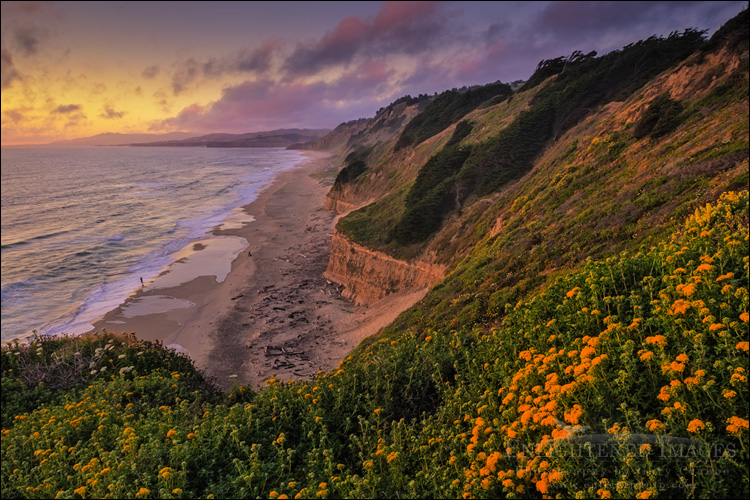 Image: Sunset over San Gregorio State Beach, San Mateo County coast, California