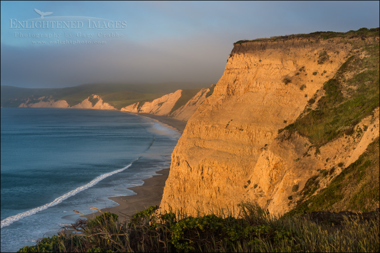 Image: Cliffs of Drakes Bay, Point Reyes National Seashore, Marin County, California
