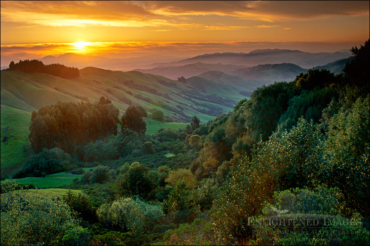 Image: Spring sunrise over green hills, near Orinda, Californiaa