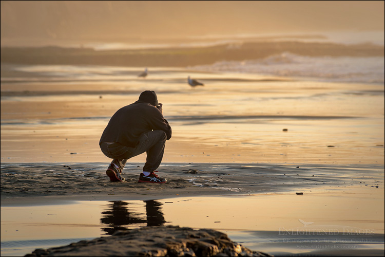 Image: Photographer shooting the sunrise at Drakes Beach, Point Reyes National Seashore, Marin County, California
