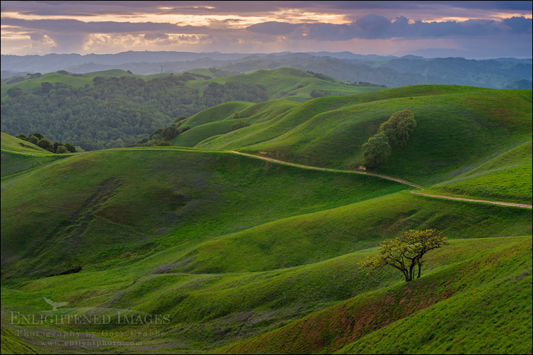 Image: Storm Sunset over rolling green hills in spring, Briones Regional Park, Contra Costa County, California