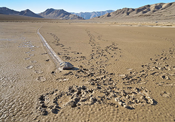 Image: Footprints in the mud on the Racetrack Playa, Death Valley National Park, California