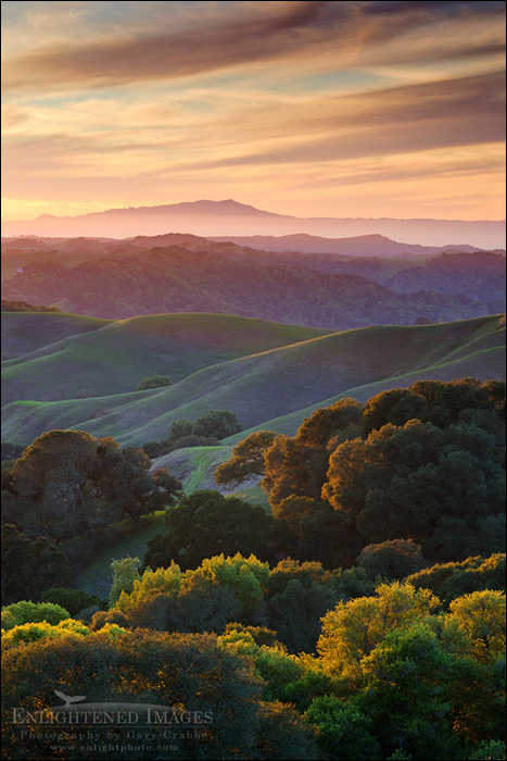 Image: Sunset over the green east bay hills looking toward Mount Tamalpais in distance, from Briones Regional Park, Contra Costa County, California