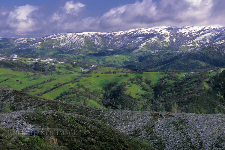 Image: Snow storm in spring dusting green rolling hills of rural Santa Clara County, California