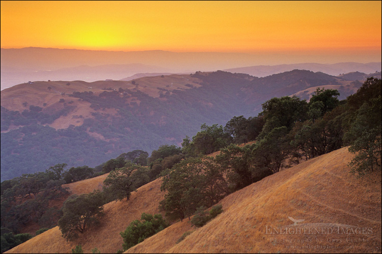 Image: Sunset light over oak trees and hills above Otis Canyon, from Palassou Ridge, Santa Clara County, California
