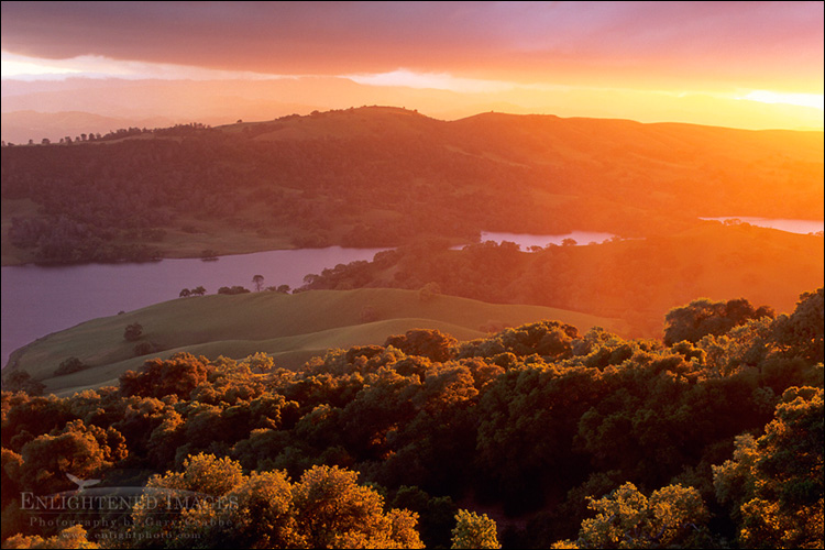 Image: Sunset light on oak trees and hills above Anderson Lake, Santa Clara County, California