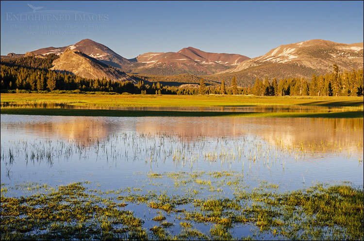 Image: Mountains above the flooded Tuolumne Meadows, Yosemite National Park, California