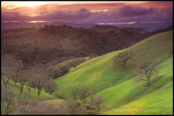 Photo Stormy Sunset Oak Trees Green Hills Mount Diablo