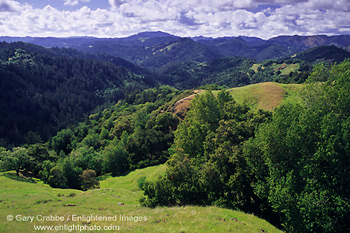 Hills Above The Russian River 23