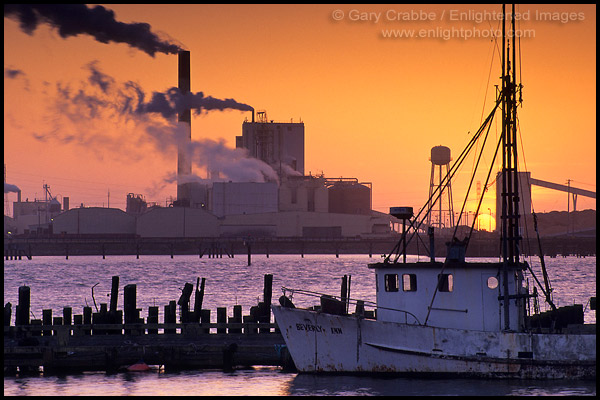 Picture pulp mill and fishing boat at sunset humboldt for Eureka ca fishing