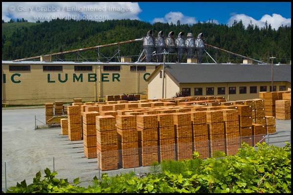 Photo Pacific Lumber Company Lumber Mill At Scotia