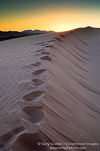 Footsteps in Sand Dunes