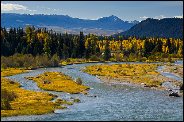 Grand River Flow >> Picture: Fall colors on aspen and cottonwood trees along the Snake River, Grand Teton National ...