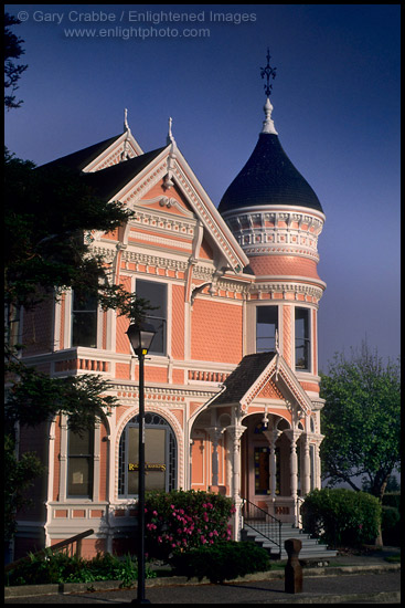https://www.enlightphoto.com/webpages/cstnorth/hum-1062a.jpg