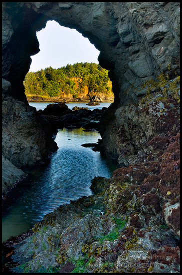 Photo Arched Rock At Low Tide Trinidad State Beach